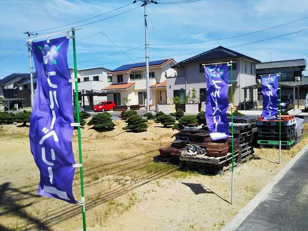 ブルーベリー畑摘み取り園の旗