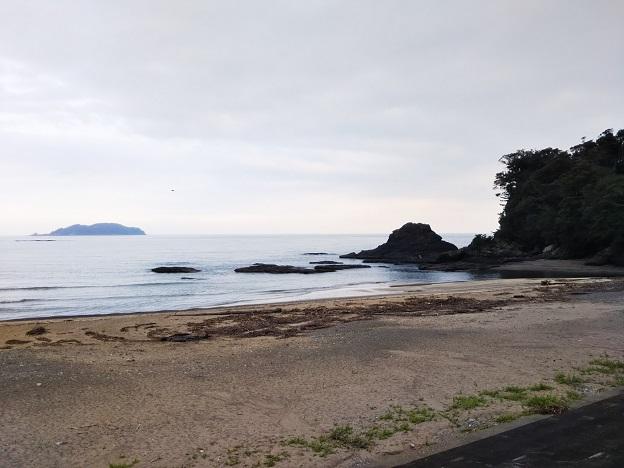 内妻海岸磯遊び