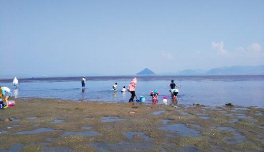 からこと丸の潮干狩り 高州でタイラギ貝 アカニシ貝 イカ等を 岡山県