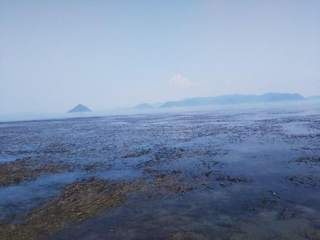 高洲の浅瀬2