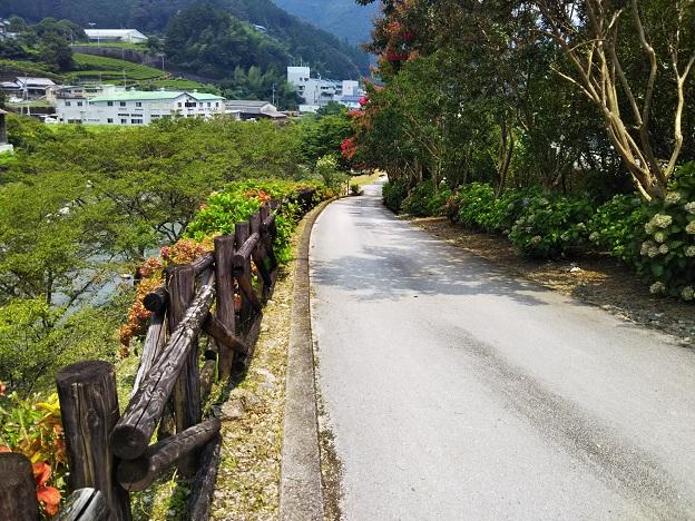 仁淀川オートキャンプ場テントサイト道