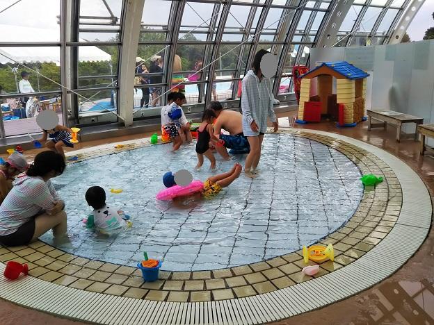 グリーンヒルズ津山グラスハウス 幼児プール