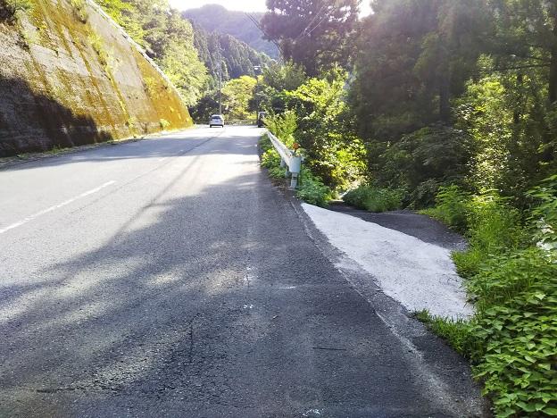 右側の貞光川へ降りる道