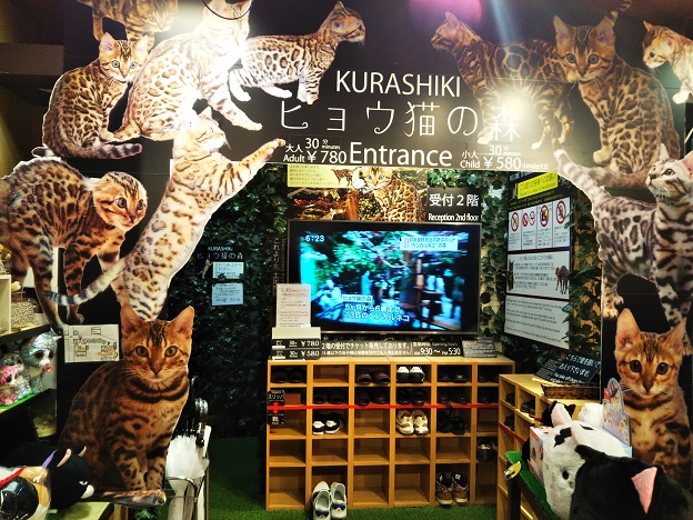 ヒョウ猫の森 入口