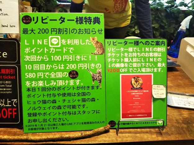 ヒョウ猫の森 ラインクーポン