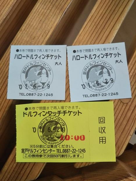 室戸ドルフィンセンター チケット