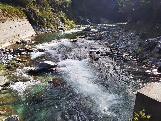貞光川橋より上流
