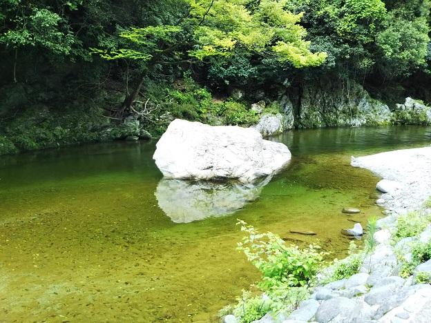 鞍瀬川飛び込める大きな岩