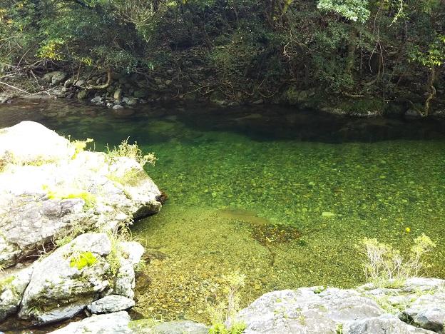 目黒川岩から飛び込める場所