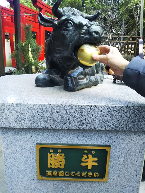 田村神社 勝ち牛