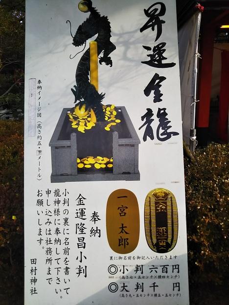 田村神社 龍小判