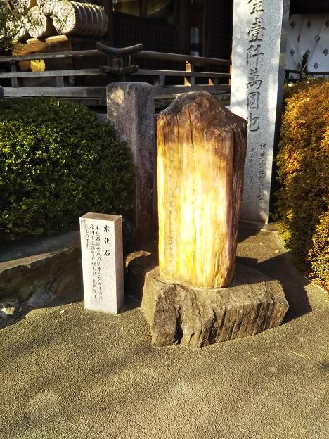 田村神社 木化石