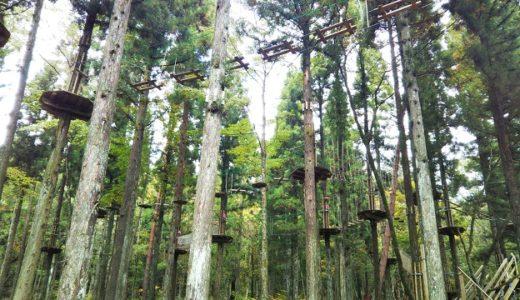 フォレストアドベンチャー広島 自然共生型アウトドアパーク ツリーアスレチック