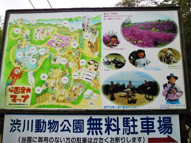 渋川動物公園 案内図