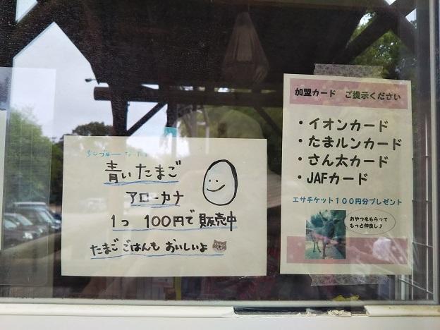 渋川動物公園 割引