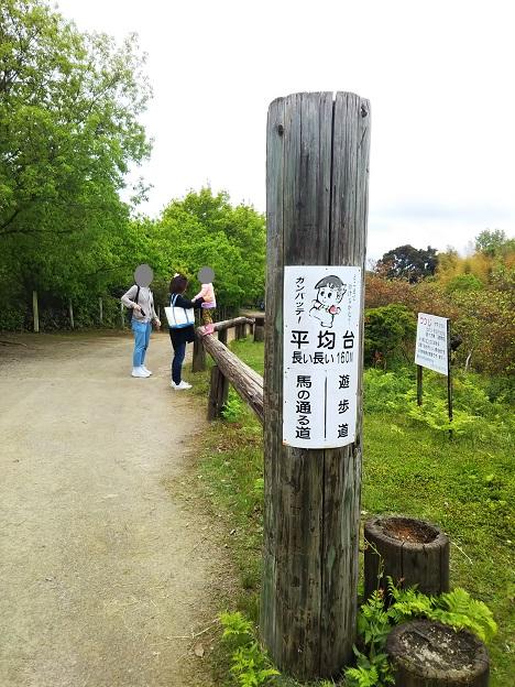 渋川動物公園 平均台