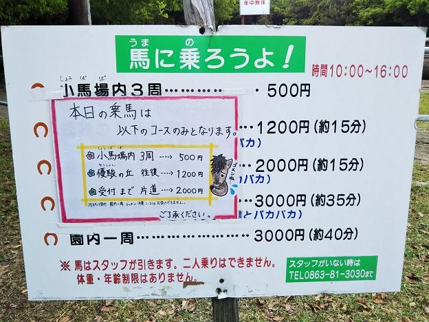 渋川動物公園 乗馬2