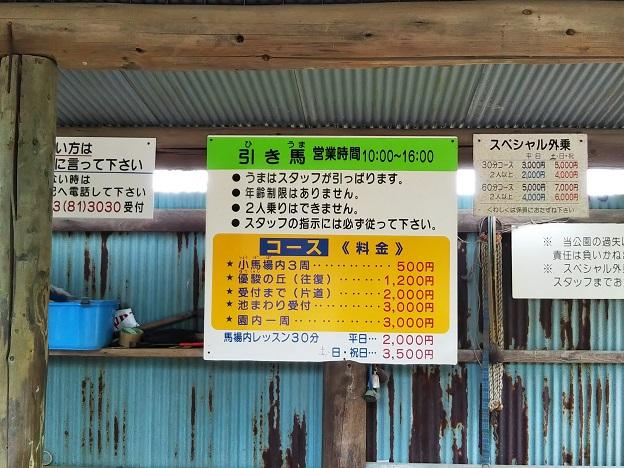 渋川動物公園 乗馬料金