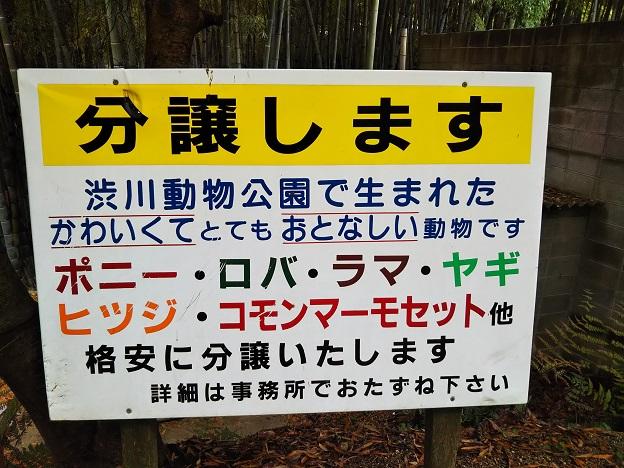 渋川動物公園 分譲