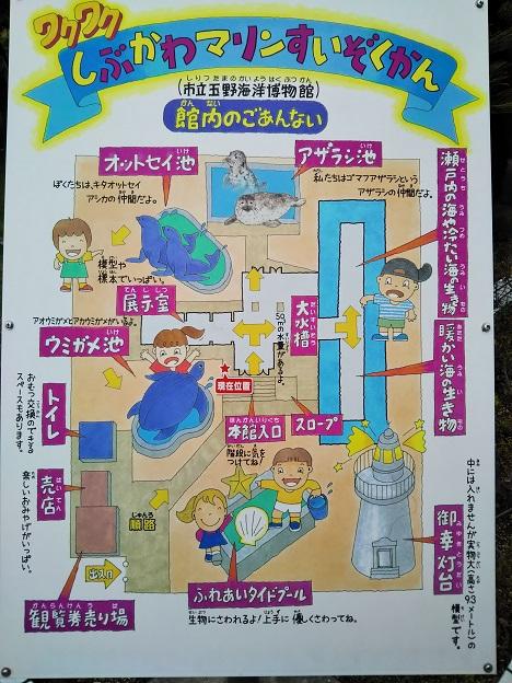 渋川マリン水族館 案内図