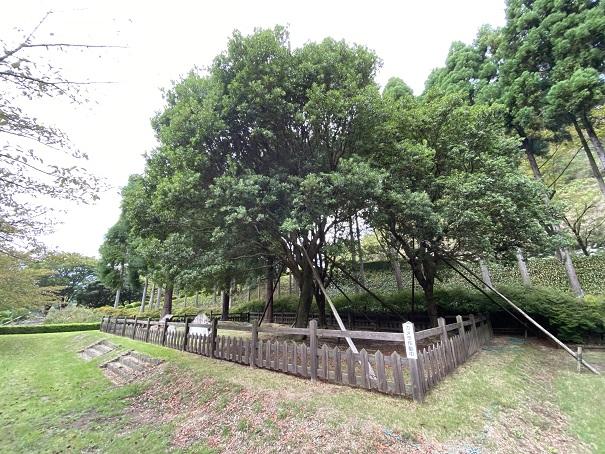 記念広場 徳島県立神山森林公園イルローザの森