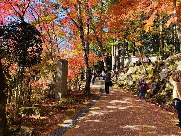 大窪寺紅葉の写真を撮影