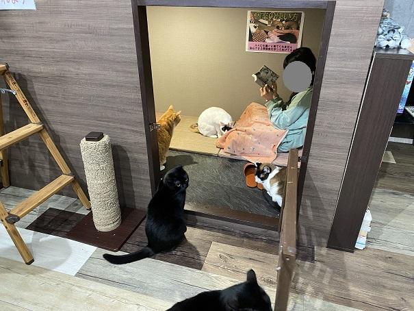 肉灸 個室の扉