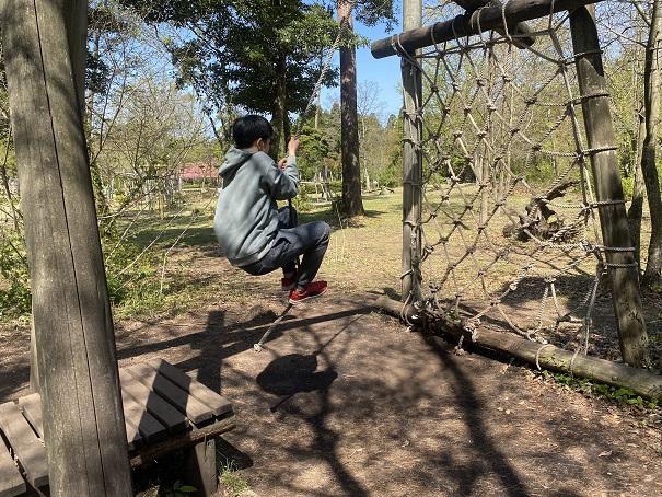 バッタのジャンプ森の国