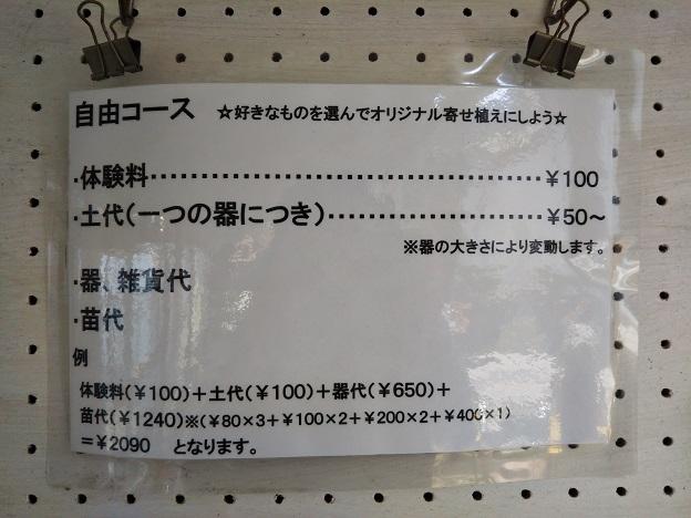 Saiki Engei自由コース