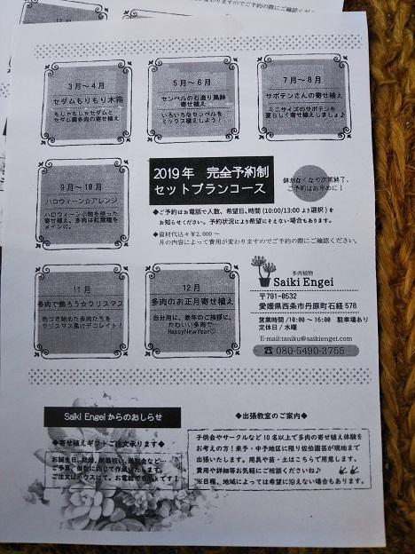Saiki Engei 寄せ植え体験