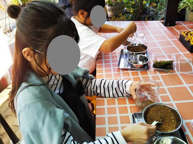 苔テラリウム作り体験 4