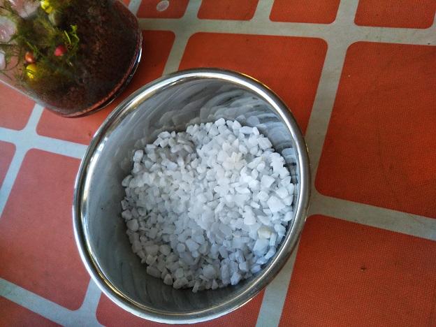 苔テラリウム作り体験 石1