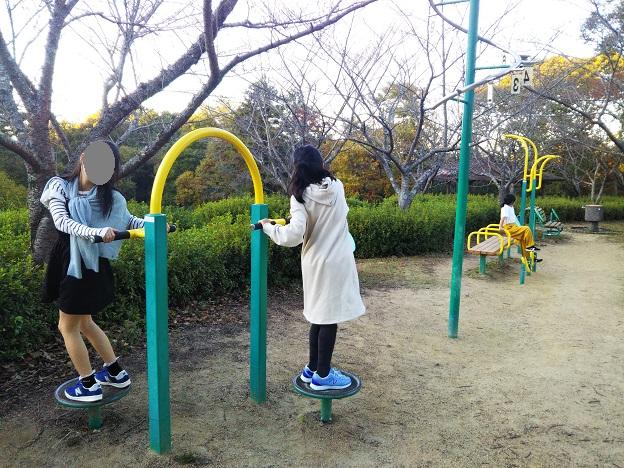 公渕森林公園 ちびっこ広場健康遊具