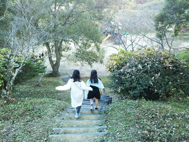 公渕森林公園 知っ子広場から下へ