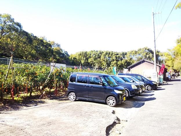 植野農園の駐車場