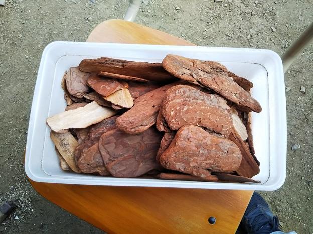 Saiki Engei松の木の皮