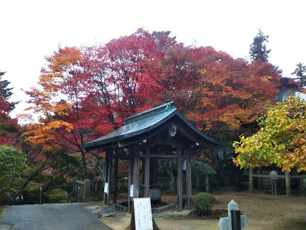 根香寺の色鮮やかな紅葉