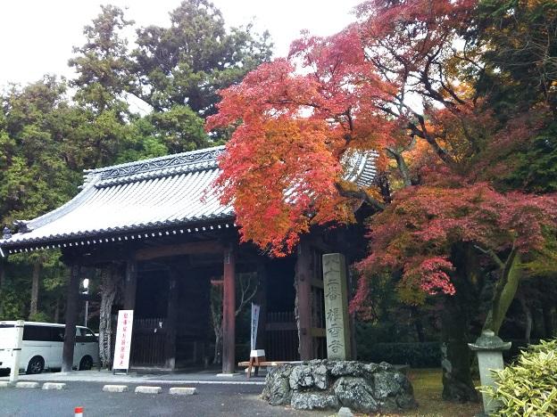 根来寺の山門辺りの紅葉