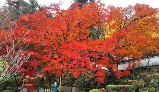 大窪寺 目を見張る紅葉の美しさ 四国八十八ヶ所第88番札所 香川県さぬき市