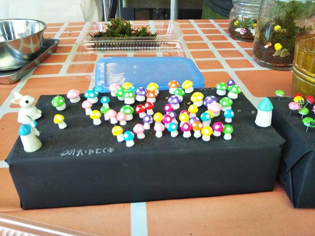苔テラリウム作り体験 飾り2