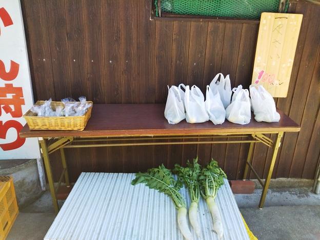 大根などの野菜の販売