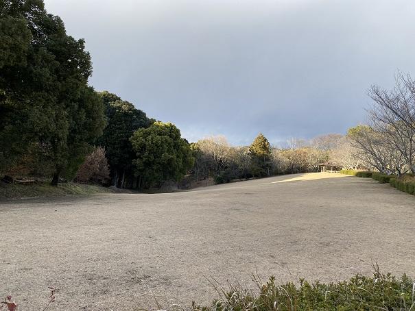 公渕森林公園 ちびっこ広場芝生