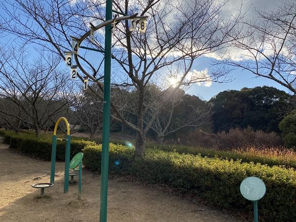 ジャンプホール公渕森林公園 ちびっこ広場