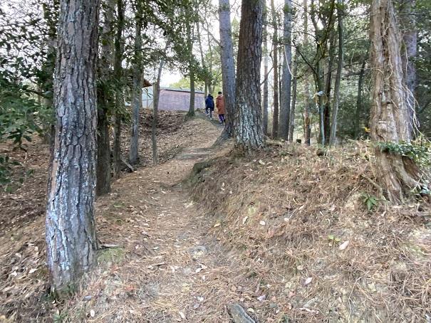 ゆるやかなみち公渕森林公園アスレチック