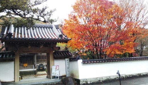 法泉寺(ほうせんじ)もみじ祭 観音寺市のきれいな紅葉