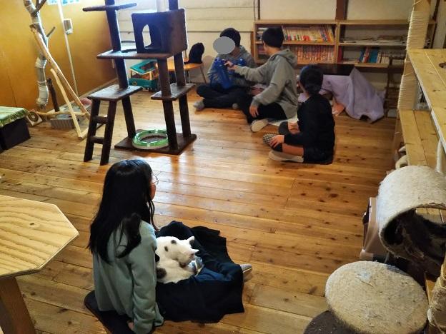 にゃんさと 部屋2