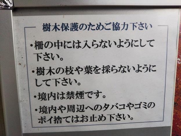 法泉寺の注意事項