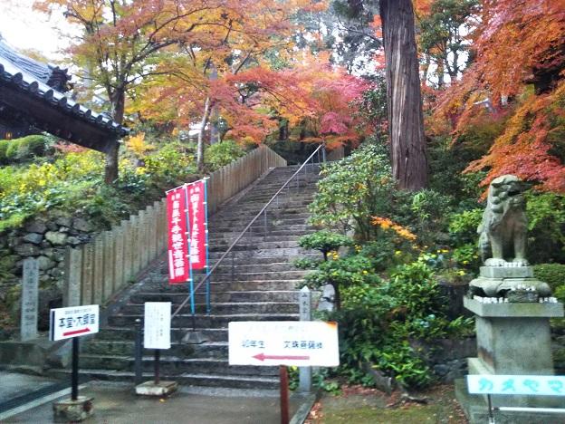 白峯寺本堂への階段