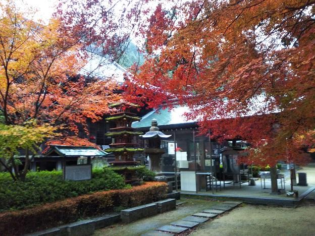 本堂付近の紅葉