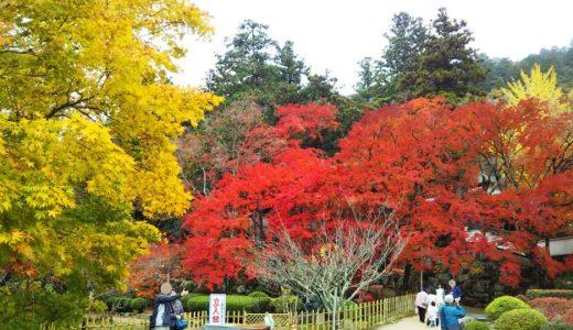 香川県の秋の紅葉が見れるおすすめのお寺 神社 お城 公園 山